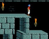 Prince of Persia online Mario j�t�k